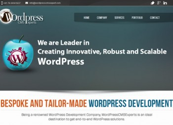 WordPress CMS Experts